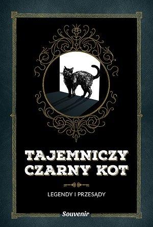 tajemniczy-czarny-kot-legendy-i-przesady-b-iext52654350